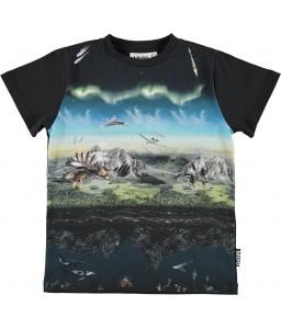 Molo T-shirt Road entirety