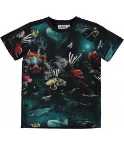 Molo T-shirt Rishi deep sea