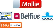 veilig betalen met Mollie